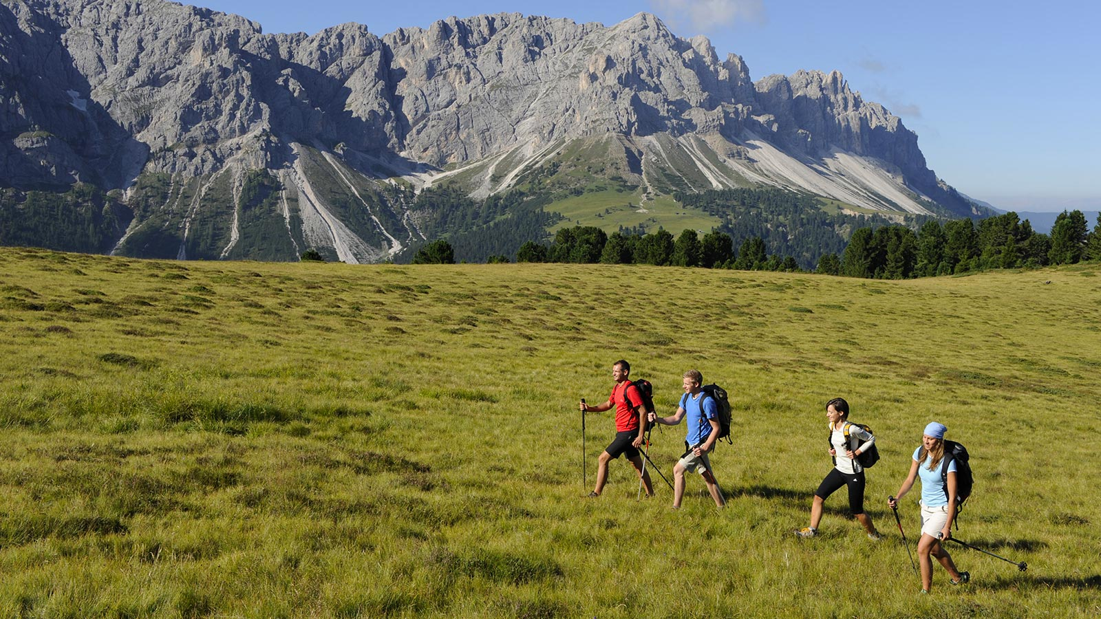 Group of four hikers on the green meadows of Plan de Corones with the Dolomites in the background